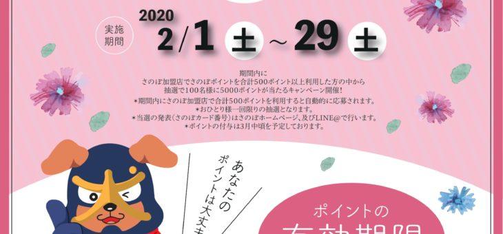 終了しました いまだけ!5000ポイントプレゼントキャンペーン 2020年2月1日~2020年2月31日